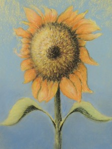 Brown Sunflower Pastel 20X16 $950